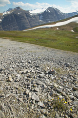 Canadian landscape with glacier. Icefields parkway. Alberta. Can