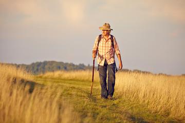 Wanderer mit Stock auf Wiese
