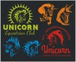 Vector set  - Unicorns and horses equestrian labels, badges - 75929978