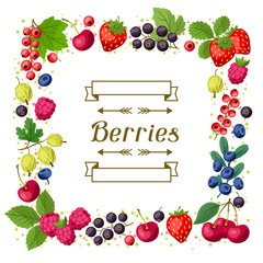 Nature background design with berries.