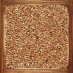Buckwheat, collection of products