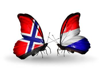 Two butterflies with flags Norway and Holland