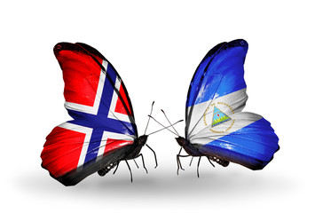 Two butterflies with flags Norway and Nicaragua