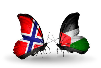 Two butterflies with flags Norway and Palestine