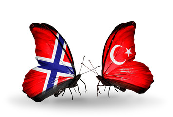 Two butterflies with flags Norway and Turkey