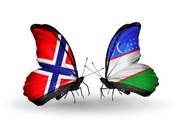 Two butterflies with flags Norway and Uzbekistan