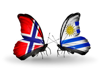 Two butterflies with flags Norway and Uruguay