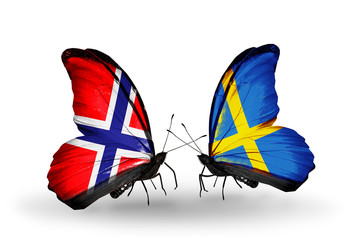 Two butterflies with flags Norway and Sweden