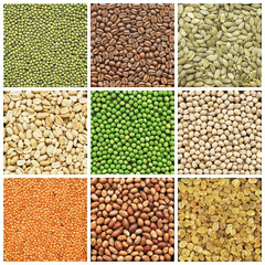 Collection products, peanuts, lentil, chickpeas, coffee, pea