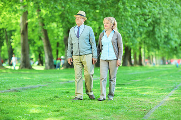 Mature couple going for a walk in a park