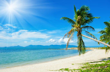 Tropical beach - vacation background