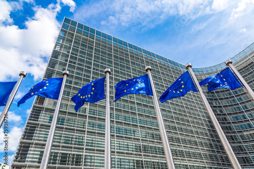Aluminium Europese Plekken European flags in Brussels