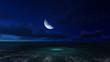 moonlit night on a sea