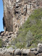 Trilha de pedras no Brasil.