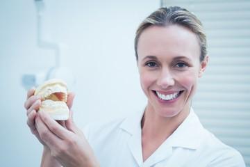Smiling female dentist holding mouth model