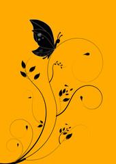 Mariposa bellas