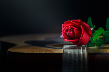 Still life rose and quitar