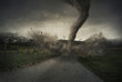 Leinwanddruck Bild - Tornado on road