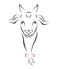 Portrait Of Goat Ink Line Art