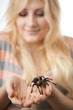 girl holding a large spider on her hands