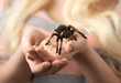 girl holding a large spider on  hands