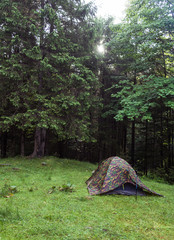 Touristic tent on the forest glade