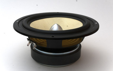 midbass speaker