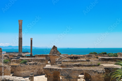 Foto op Aluminium Tunesië Ruins of Antonine Baths at Carthage