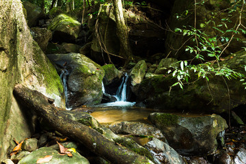 Small waterfall in deep forest.