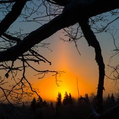 beautiful dark sunrise over forest in winter