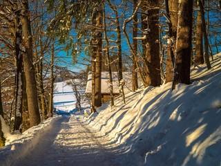 Winterliche Idylle in bayrischem Wald