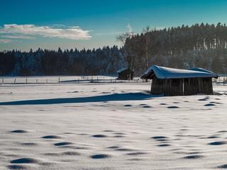 Schnee streicht Landschaft weiß