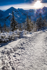 Winter mountain trail at sunrise