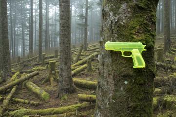Destruction of nature