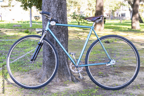 Papiers peints Velo Old bicycle leaning against a tree