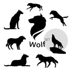 Wolf set vector