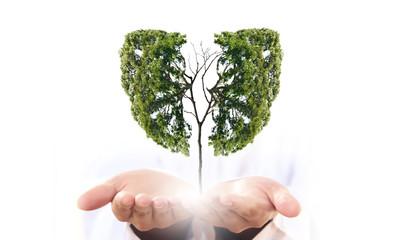 Air pollution