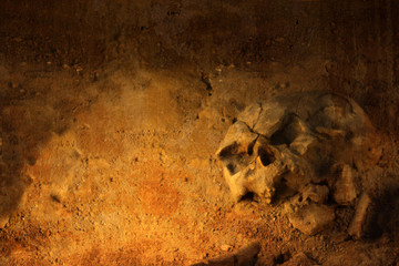 Background with human skull