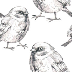 pencil sketch seamless pattern with bird sparrow