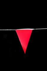 Red Pennant © Arena Photo UK