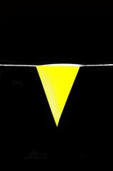 Yellow Pennant © Arena Photo UK