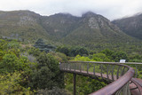 Kirstenbosch Gardens on a partly cloudy day with walkway poster