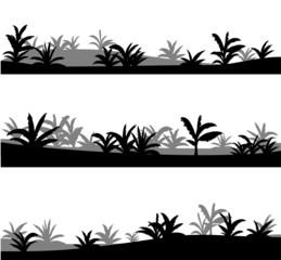 Agave, vector desert landscapes