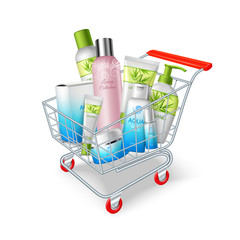 Cosmetics Shopping Cart