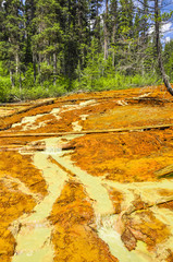Paint Pots in Kootenay National Park, Canada