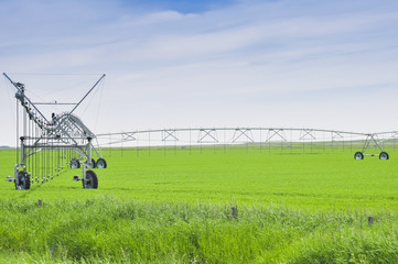 Irrigation sprinklers in a farm field (Canada)