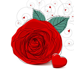 Vector red rose design on white background