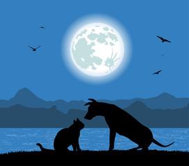 silhouette di cane e gatto