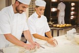 Team of bakers kneading dough
