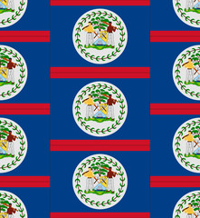 Belize flag texture vector